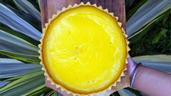 Pie Susu / Lontar - Dapur Mama Kidung - Sengkaling Malang, eMBe UMKM, UMKM GKJW.org