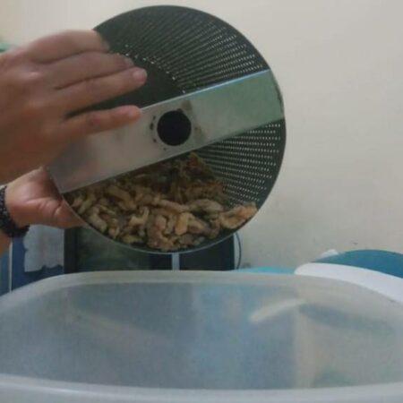 Sekilas Pembuatan Pare Crispy - Tunjungsekar Malang, eMBe UMKM, UMKM GKJW