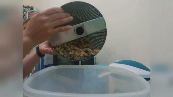 Sekilas Pembuatan Pare Crispy - Tunjungsekar Malang, eMBe UMKM, GKJW