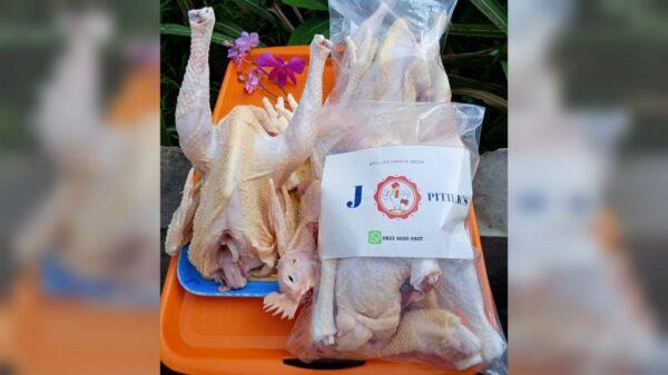 Daging Ayam Pejantan J PITIEK'S - Purwodadi Kras Kediri, eMBe UMKM, UMKM GKJW