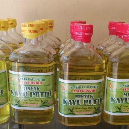 Minyak Kayu Putih Perhutani - Banyuwangi, eMBe UMKM, UMKM GKJW