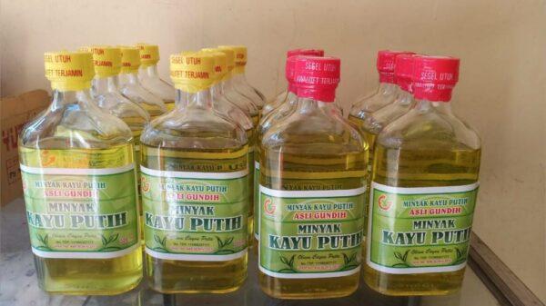 Minyak Kayu Putih Perhutani - Banyuwangi, eMBe UMKM, Gerakan Warga GKJW.org