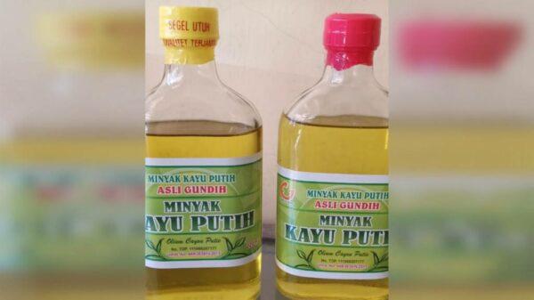 Minyak Kayu Putih Perhutani - Banyuwangi, eMBe UMKM, UMKM GKJW.org